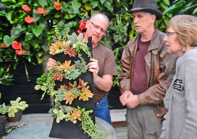Chris Bribach demonstrates how to plant a Florafelt® 4-Pocket Vertical Garden Planter with Succulents at the San Francisco Conservatory of Flowers.