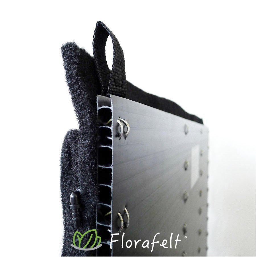 Florafelt® pocket panels are mounted to a rigid plastic board that keeps walls dry.