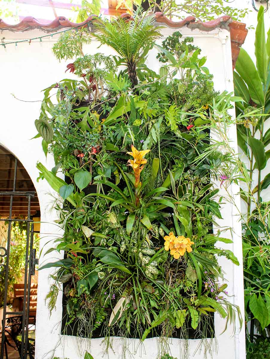 Botanical Vertical Masterpiece for a Miami Courtyard. Created with a Florafelt 24-Pocket Vertical Garden Planter.