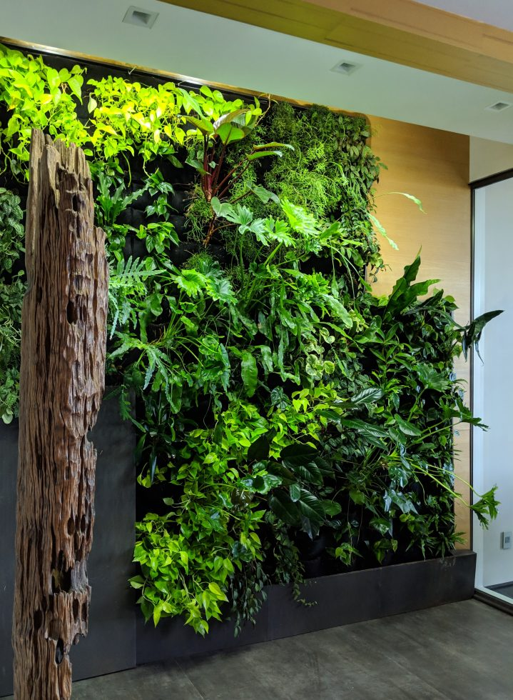 This image has an empty alt attribute; its file name is Florafelt-Pockets-Vertical-Garden-Systems-Lindsey-Graves-Living-Green-Design-San-Francisco-5-719x980.jpg