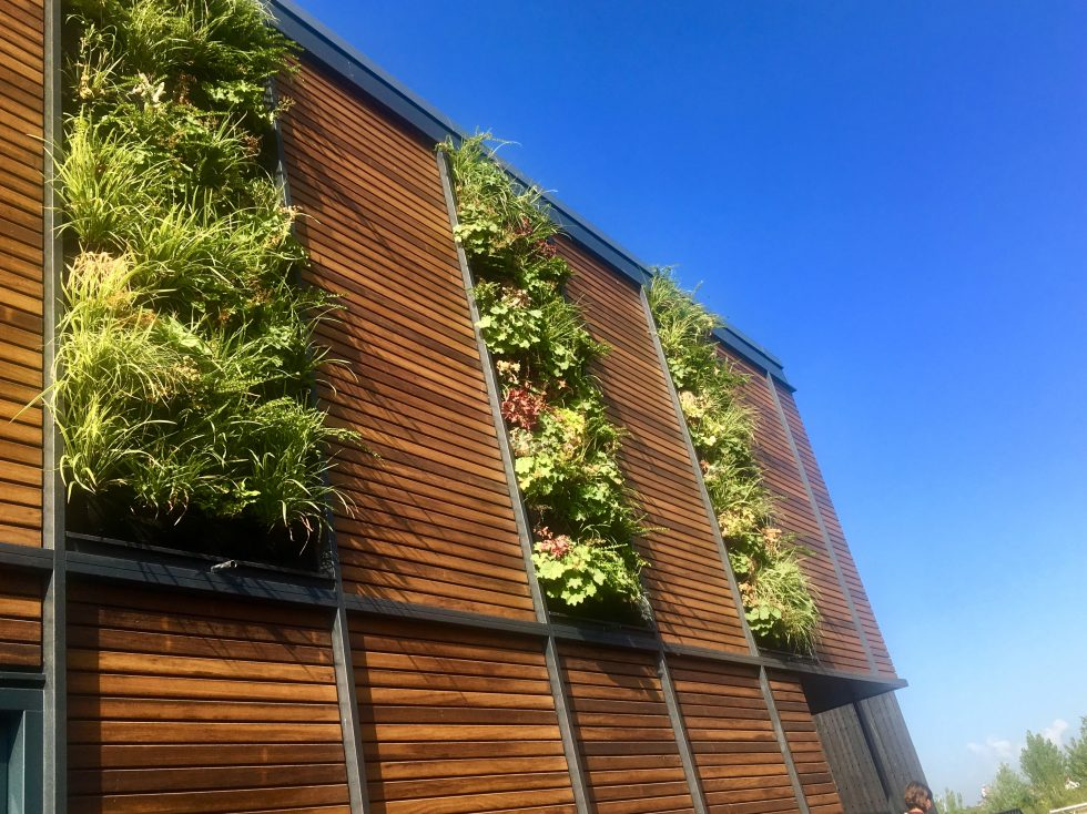 Living walls designed for a Schoonschip floating home by Joris Bunschoten of the The Vertical Planting Specialist using Florafelt Pockets.